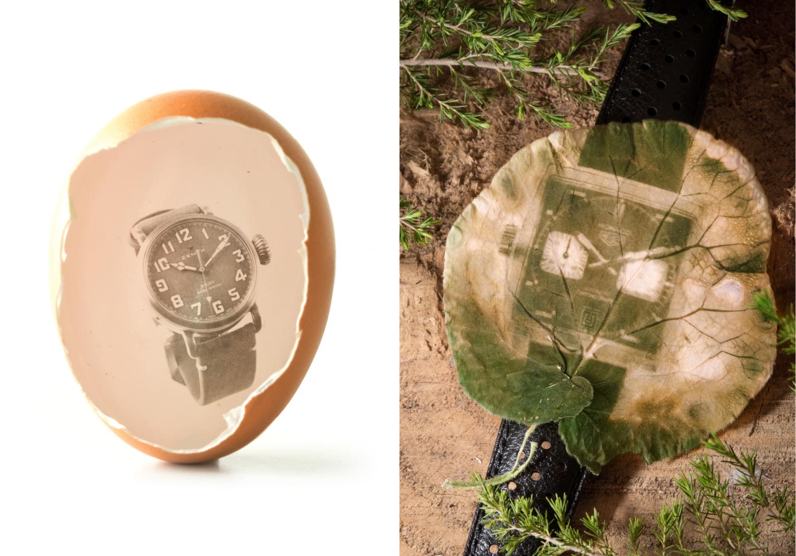 Impressão em gelatina de brometo de prata no interior de um ovo e clorofilotipia do TAG Heuer Monaco em tamanho real   © Paulo Pires / Espiral do Tempo
