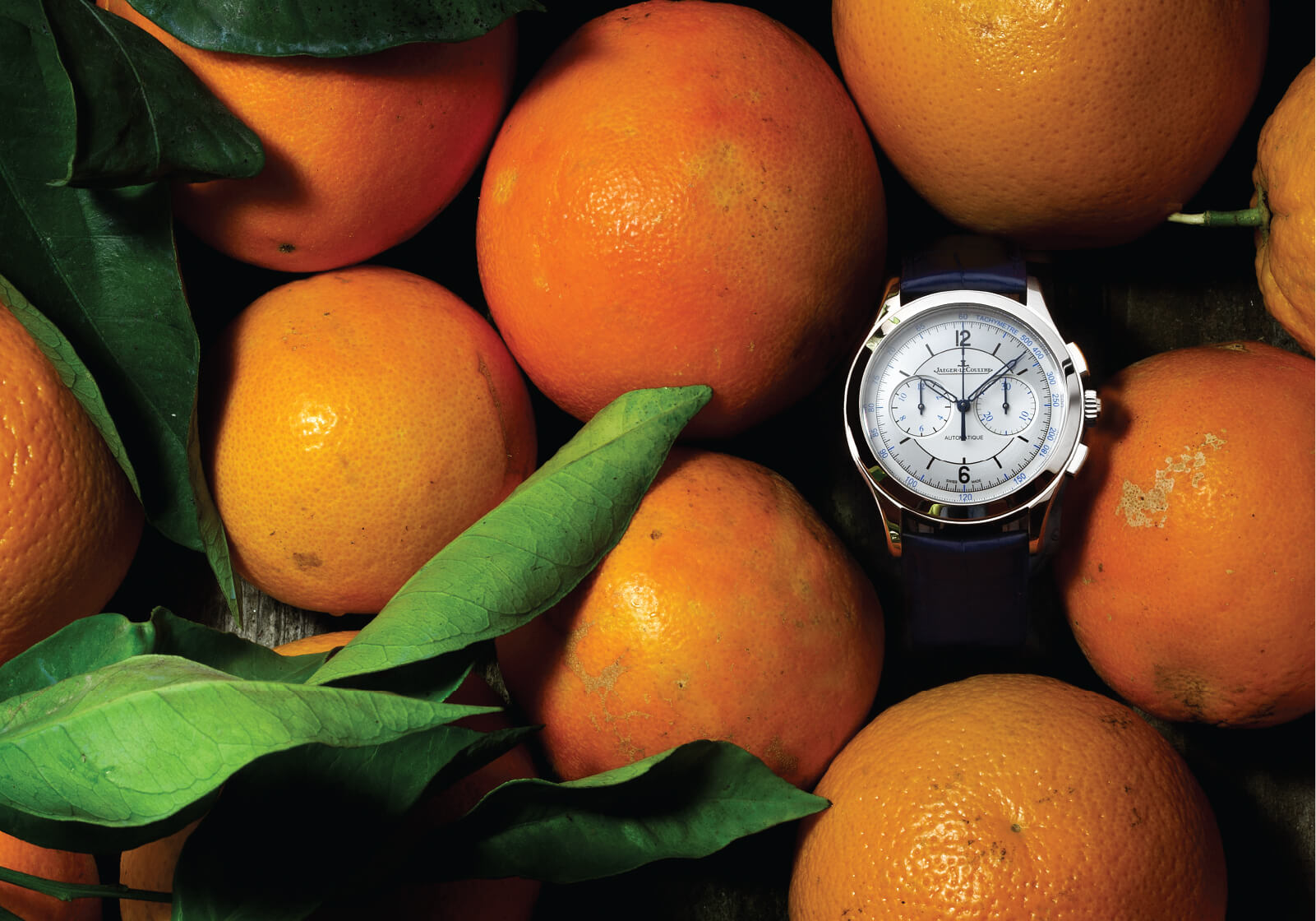 Jaeger-LeCoultre Master Chronograph Ref. Q1538530   Ø40mm sobre fundo de laranjas   © Paulo Pires / Espiral do Tempo