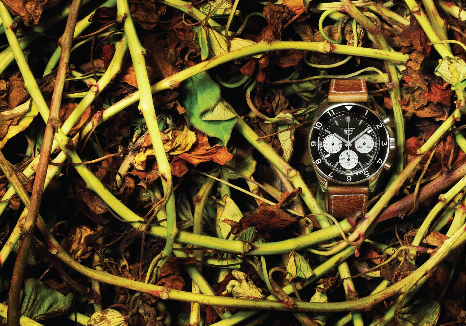 TAG Heuer Heuer Heritage Cronógrafo Calibre Heuer 02 Ref. CBE2110.FC8226   Ø 42 mm sobre fundo de arbustos e folhas   © Paulo Pires / Espiral do Tempo